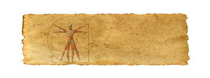 Conceptual vitruvian human body drawing on old paper background Stock Photos