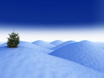 Conceptual Winter Landscape Stock Images