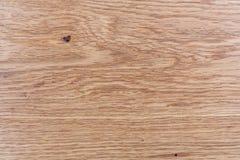 Conceptueel het landschapsbeeld van de eiken hout abstract aard als achtergrond Royalty-vrije Stock Afbeelding
