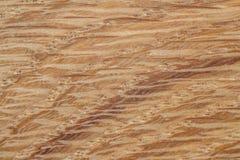 Conceptueel het landschapsbeeld van de eiken hout abstract aard als achtergrond Stock Foto's