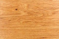 Conceptueel het landschapsbeeld van de eiken hout abstract aard als achtergrond Stock Afbeeldingen