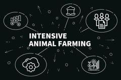 Conceptuele bedrijfsillustratie met het woorden intensieve dier stock illustratie