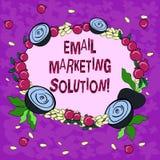 Conceptuele hand die tonend E-mail Marketing Oplossing schrijven Bedrijfsfoto die helpend klanten om hun problemen op te lossen d royalty-vrije illustratie