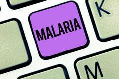 Conceptuele hand die tonend Malaria schrijven Bedrijfsfoto die Levensgevaarlijke gedragen mug demonstreren de Periodes van de blo stock foto's