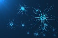Conceptuele illustratie van neuronencellen met gloeiende verbindingsknopen Synaps en Neuronencellen die elektrochemisch product v Royalty-vrije Stock Foto