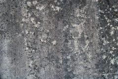 Conceret bakgrund Royaltyfri Fotografi