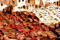 Conceria, Fes Marocco Immagine Stock Libera da Diritti
