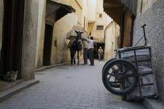 conceria Fes Medina, Marocco l'africa Fotografia Stock Libera da Diritti