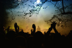 In Concert. Low light ambient photo of the crowd in a open air rock concert stock photo