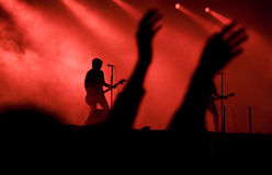 Concert. Rock concert with acclaiming audience Royalty Free Stock Image