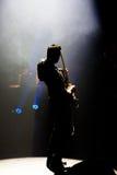 Concert chez Harpa Photos libres de droits