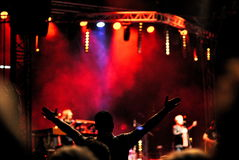 Concert. Crowd of people at the concert royalty free stock photography