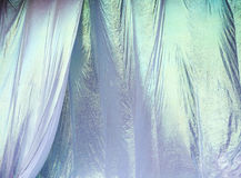 Concert Curtains Stock Images