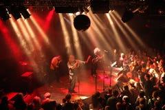 Concert d'avantage pour l'émeute de chat à Prague, République Tchèque Image libre de droits