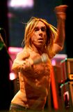 CONCERT D'IGGY POP Images libres de droits