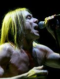 CONCERT D'IGGY POP Photo libre de droits