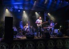 Concert de musique rock Photo libre de droits