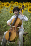 Concert de violoncelle Photo libre de droits