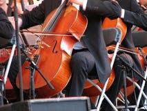 Concert de violoncelle de violon Photographie stock