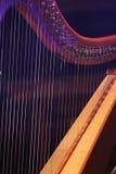Concert Harp. close up. Stock Photo