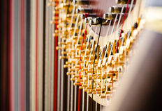 Concert harp close up. Close up of strings and action on a concert grand harp stock photos