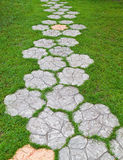 Concert path in the green grass Royalty Free Stock Photography