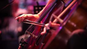 Concert, two women playing the cello, hand close up. Symphony concert, two women playing the cello, hand close up stock footage