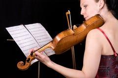 Concerto Imagens de Stock Royalty Free