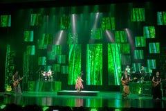 Concerto da música popular de estilo chinês Imagens de Stock