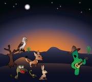 Concerto da noite no deserto Fotografia de Stock