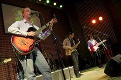 Concerto della banda rock Immagini Stock Libere da Diritti