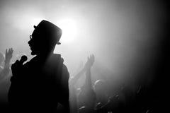 Concerto - folla, cantante Fotografie Stock Libere da Diritti