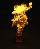 Concesión de la estrella en el fuego Imagenes de archivo