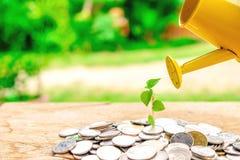 Concetti di investimento finanziario fotografia stock