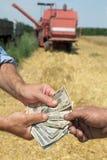 Concetto agricolo Immagini Stock Libere da Diritti