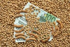 Concetto agricolo, soia e soldi Fotografia Stock