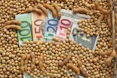 Concetto agricolo, soia e soldi Immagini Stock