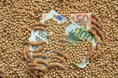 Concetto agricolo, soia e soldi dell'euro Immagini Stock Libere da Diritti