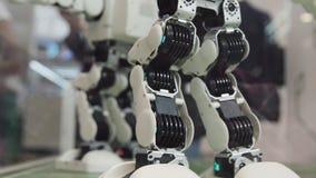 Concetto a alta tecnologia di scienza e di futuro Ballare astuto dei robot di umanoide Robot di dancing Concetto futuro di tecnol fotografie stock libere da diritti