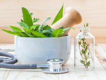 Concetto alternativo di sanità Menta verde delle erbe fresche, rosemar Fotografia Stock