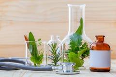 Concetto alternativo di sanità Menta verde delle erbe fresche, rosemar Fotografie Stock
