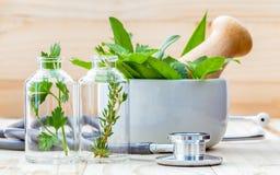 Concetto alternativo di sanità Menta verde delle erbe fresche, rosemar Immagine Stock Libera da Diritti