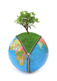 Concetto ambientale   Fotografia Stock