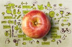 Concetto con la mela e gli scarabocchi Fotografie Stock