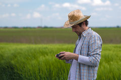 Concetto d'agricoltura astuto, agricoltore che utilizza fuco nel campo Immagine Stock Libera da Diritti