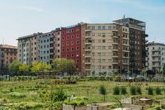 Concetto d'agricoltura urbano di sostenibilità, catturato a Milano, la Lombardia, Italia Fotografia Stock