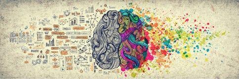 Concetto da sinistra a destra del cervello umano, illustrazione strutturata Parte destra e sinistra di cervello umano, emotial cr royalty illustrazione gratis