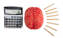 Concetto degli emisferi del cervello fra logica e creatività Fotografia Stock Libera da Diritti