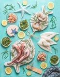 Concetto dei frutti di mare Vari frutti di mare su fondo blu-chiaro, decorato con le alghe, vista superiore fotografia stock libera da diritti