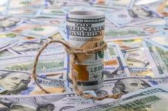 Concetto dei soldi Rotolo dei dollari Fotografia Stock Libera da Diritti